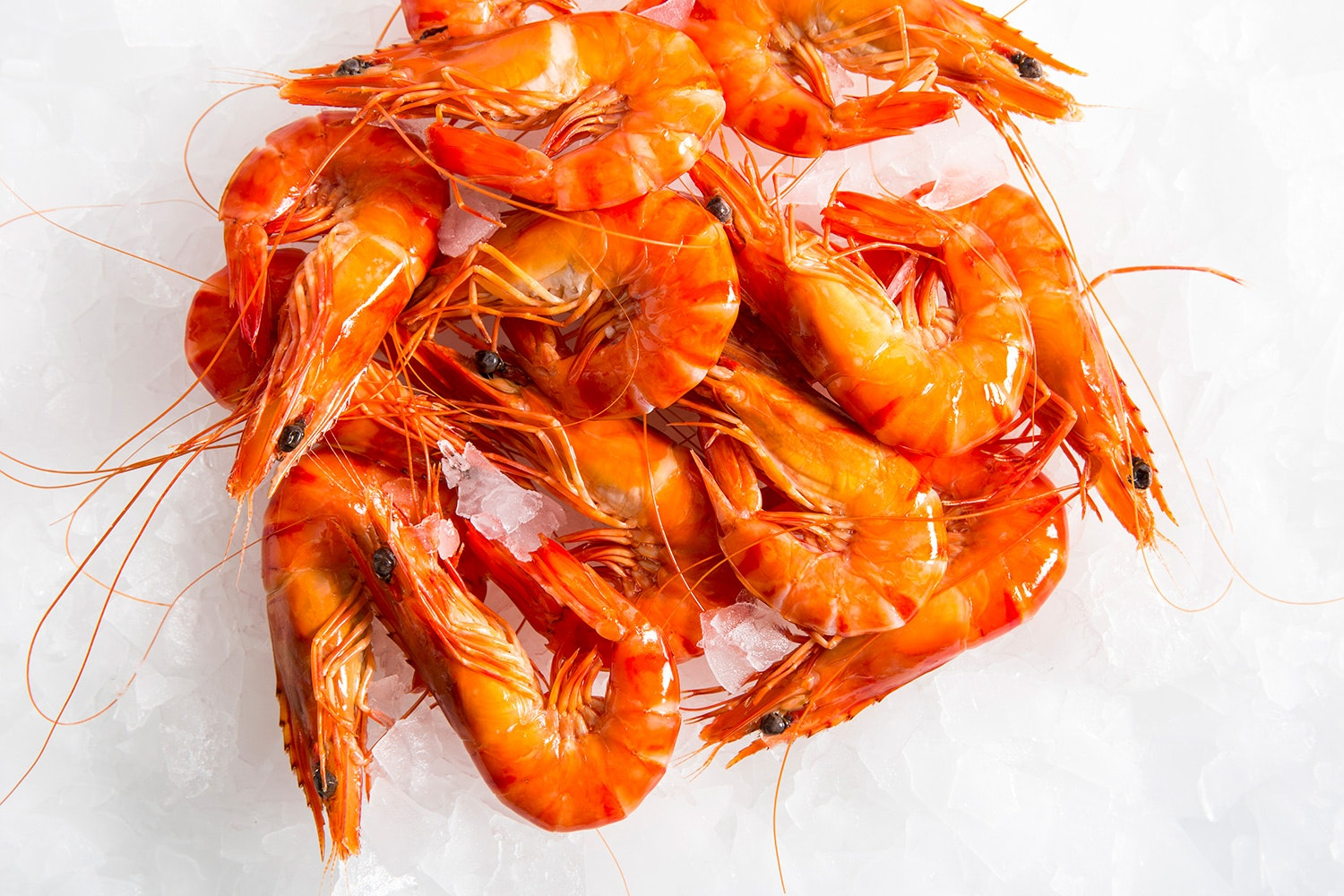 Shrimp with shell